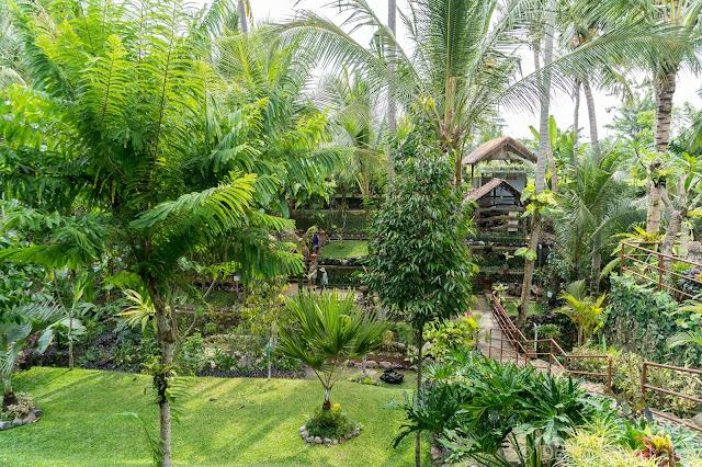 Warung Kepala - Ubud - Bali