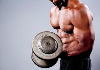 cara membesarkan otot lengan dengan barbel
