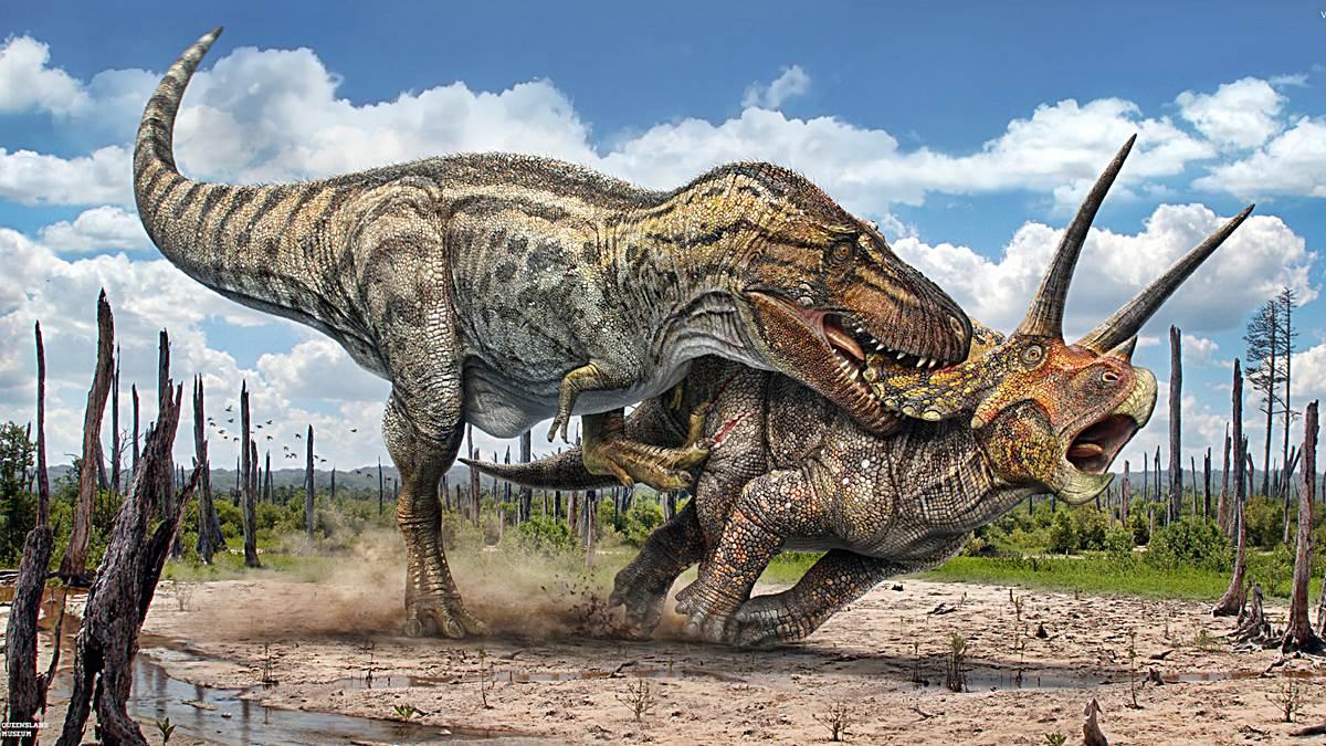 Fundacion Dinosaurios Cyl: 5 Preguntas Que Seguro Te Haces