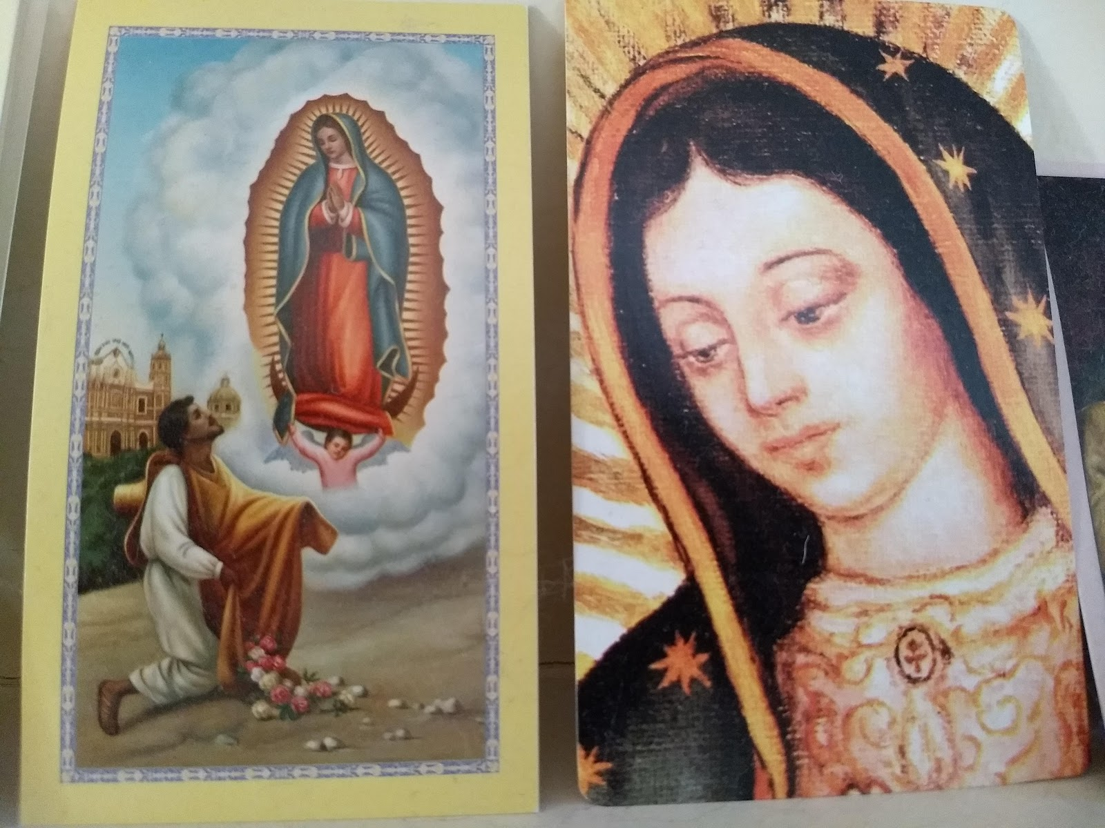 Vijaya Bodach Bound Sale In Honor Of Our Lady Of Guadalupe