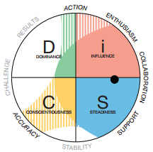 Everything DiSC profiles - Communication Styles