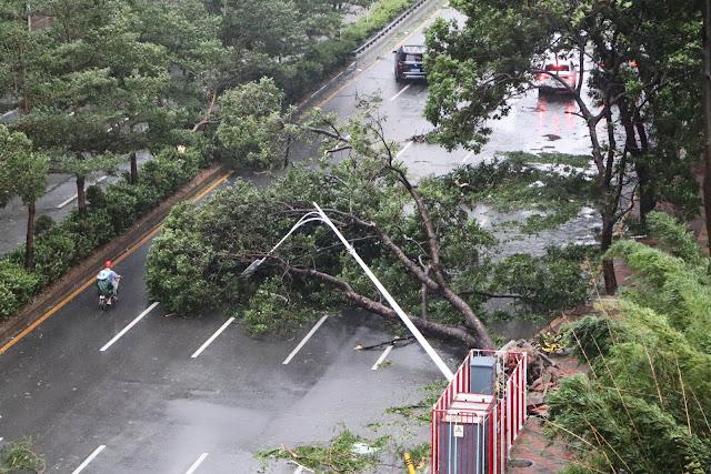 Shenzhen Typhoon