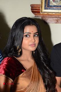 Actress Anupama Parameswaran Stills in Silk Saree with Shatamanam Bhavati Team at Sandhya Theater  0007.JPG