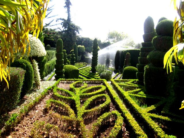 Botanical Garden Madeira Shape Garden