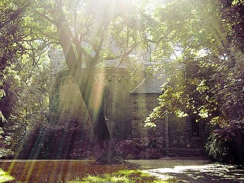 """""""Casa en el bosque"""""""