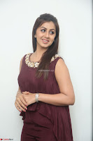 Nikki Galrani in a Brown Shining Sleeveless Gown at Nakshatram music launch ~  Exclusive 041.JPG