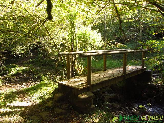Puente sobre el río Mampodre en Parres