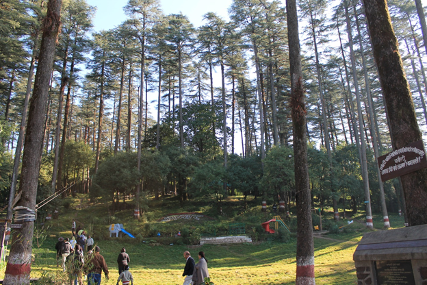 Eco Park near Dhanolti