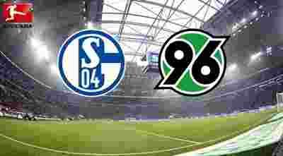 Schalke 04 vs Hannover 96 Full Match & Highlights 21 January 2018