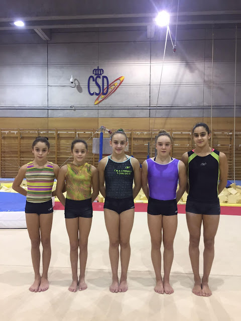Deporte de alcorc n gimnasia for Gimnasio alcorcon