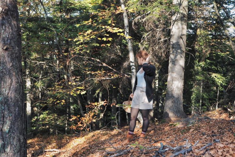 Ramassage de châtaignes et cueillette de champignons en forêt