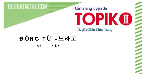 Bài 16: V +느라고 Vì ..nên | TOPIK II 읽기