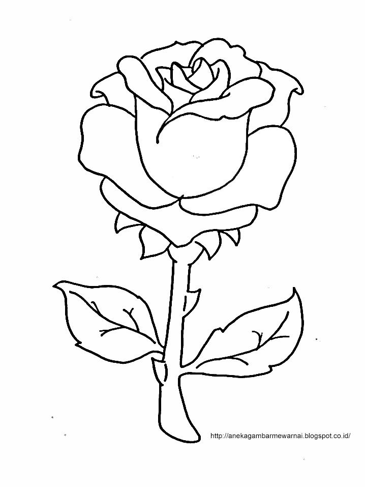 Gambar Mewarnai Bunga Mawar Untuk Anak PAUD dan TK 2