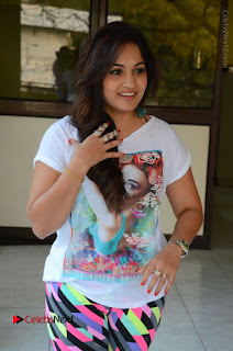 Actress Madhavi Latha Latest Stills at Swachh Hyderabad Cricket Press Meet  0037.JPG
