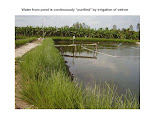 Vietnam Vetiver Network -- Vetiver System Foundation -- Activities -- September 2015 to August 2018