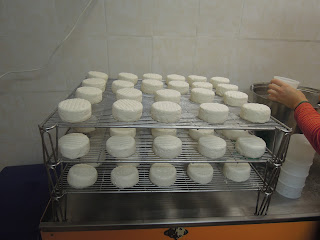 france goat cheese