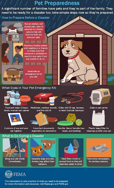 Information poster from CDC about pets evacuations