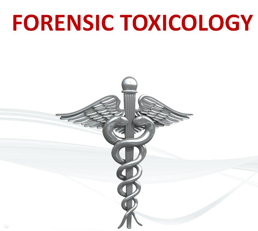 Forensic Science Segment 2