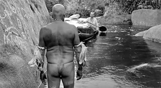 DVD & Blu-ray Release Report, Embrace of the Serpent, Ralph Tribbey