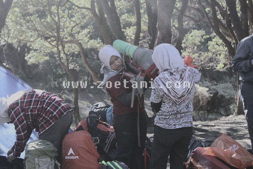 Info Pendakian Gunung Papandayan Paling Lengkap