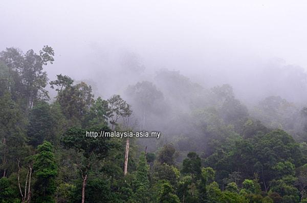 Pahang Lembah Enggang