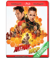 ANT-MAN AND THE WASP: EL HOMBRE HORMIGA Y LA AVISPA (2018) FULL 1080P HD MKV ESPAÑOL LATINO