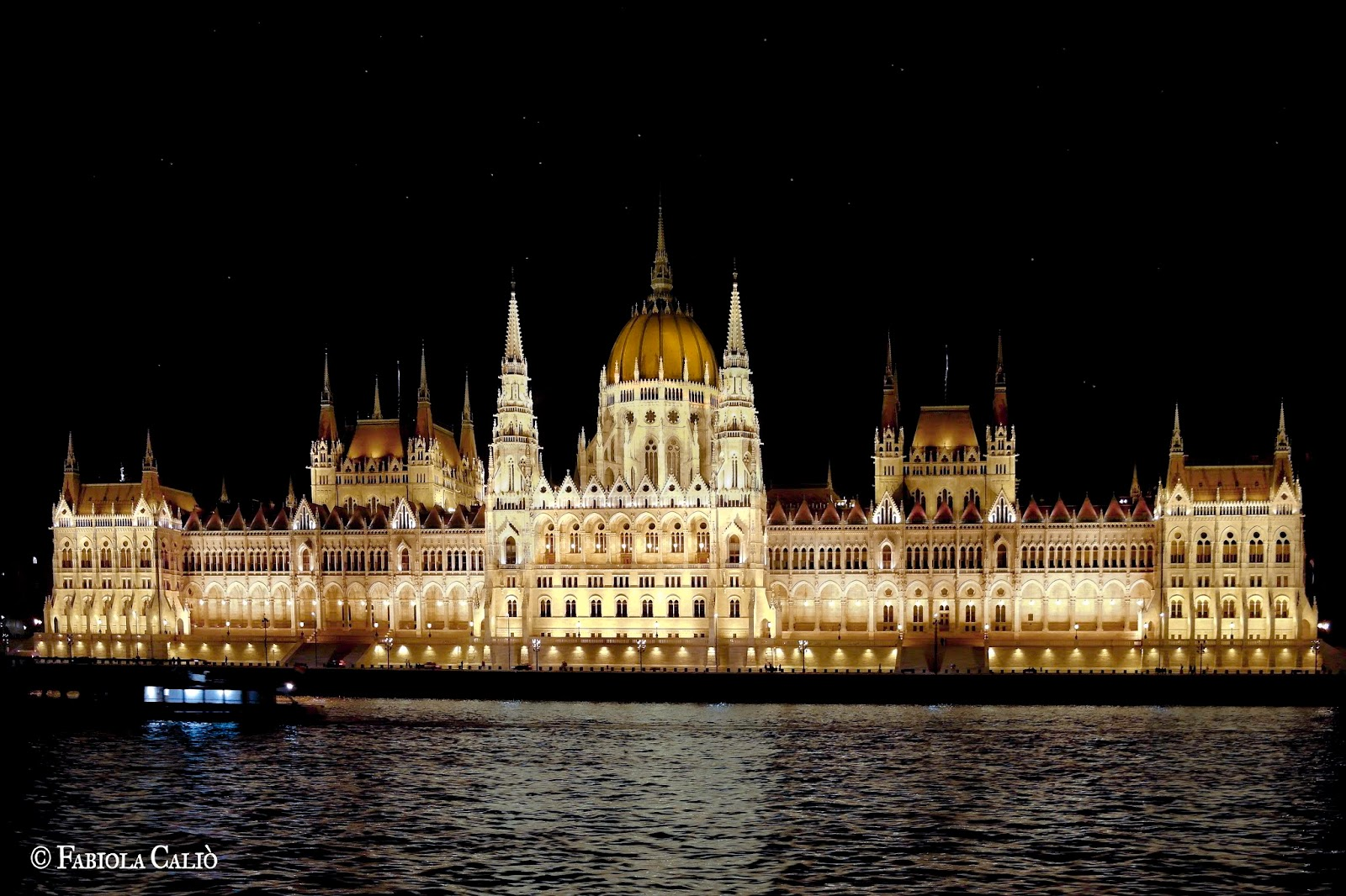 Budapest Palazzo del Parlamento di Notte