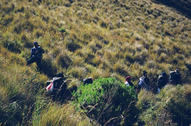 Rombongan Pendaki Gunung Semeru