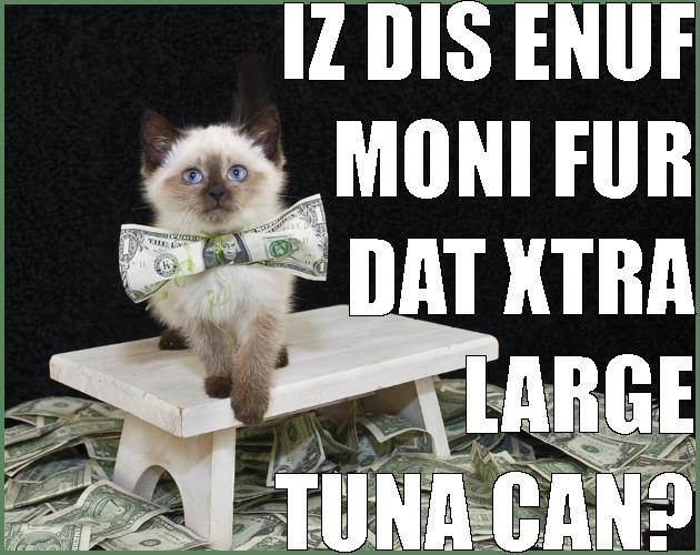 cat purchasing tuna