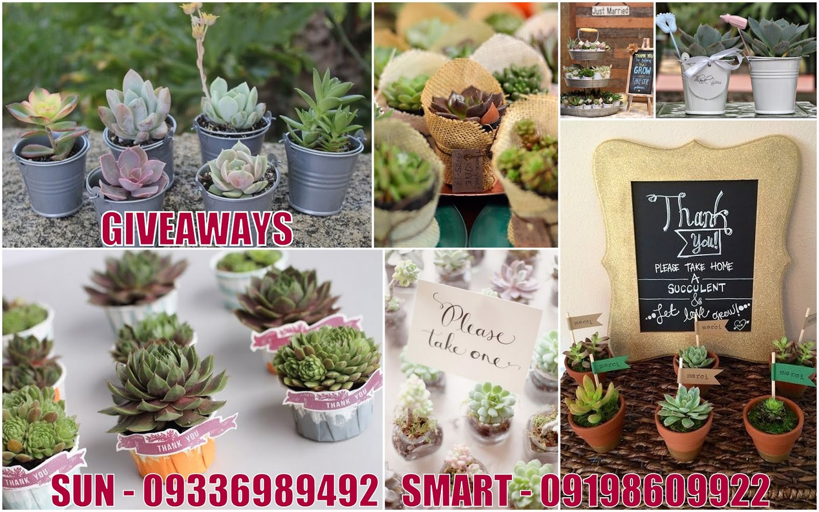 Wedding Gift Giveaway Ideas: Giveaways For Wedding, Debut, Birthday, Christening