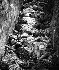 Campos de concentración de Auschwitz