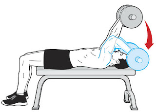 lying triceps extension,triceps workouts,killer workouts for triceps