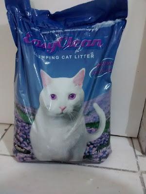 teste areia sanitária gatos