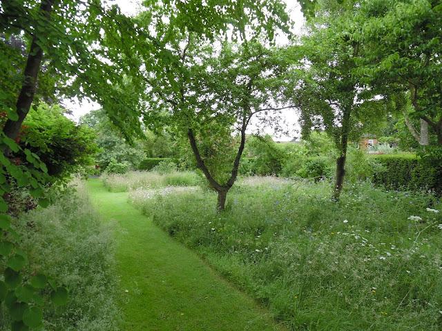 łąka kwietna w sadzie, ogród naturalistyczny