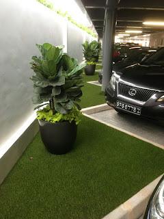 Rumput sintetis Parkiran kendaraan