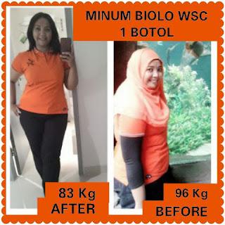 Obat Diet No 1 Wsc Biolo