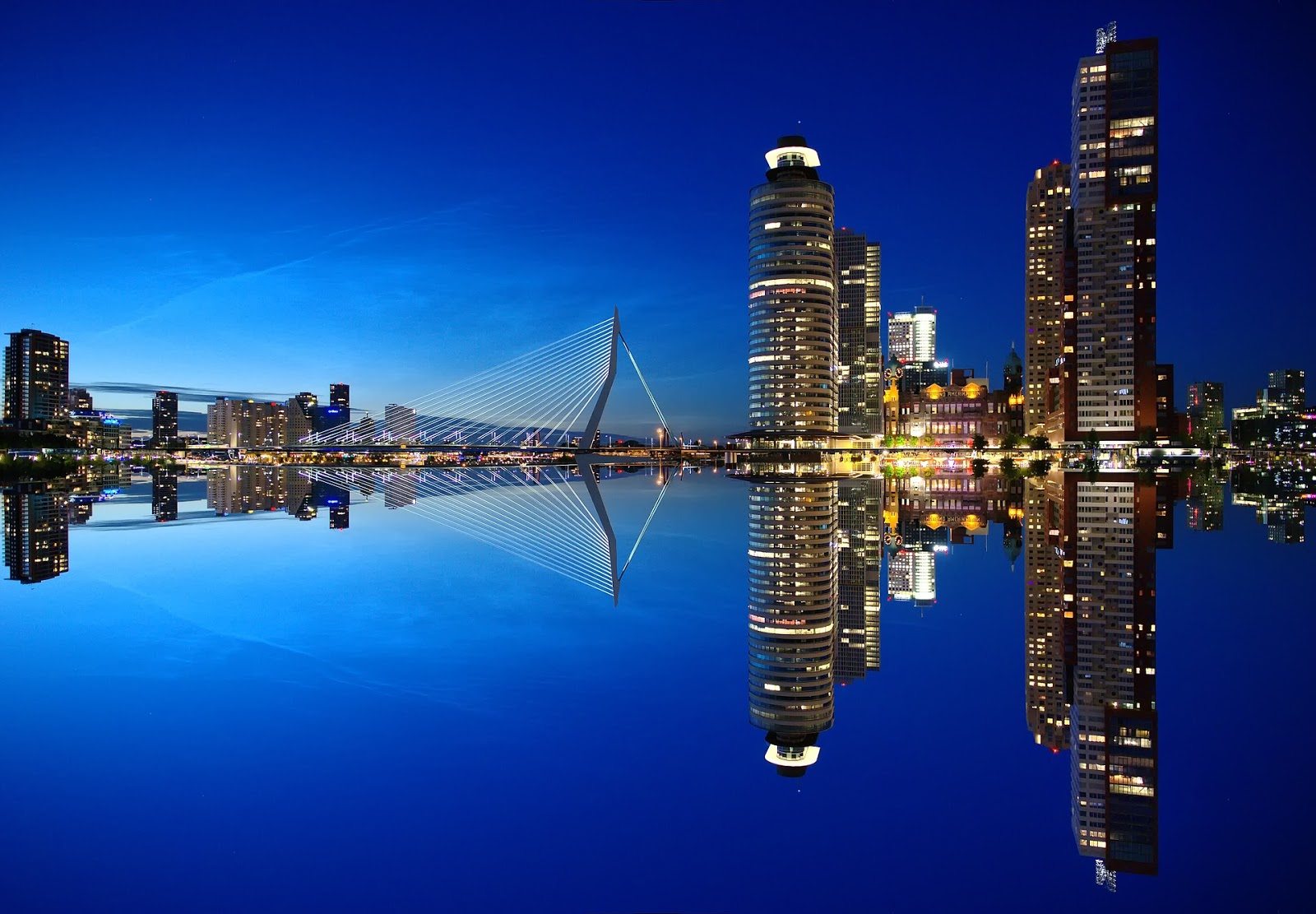 Image: Rotterdam Skyline via Pixabay