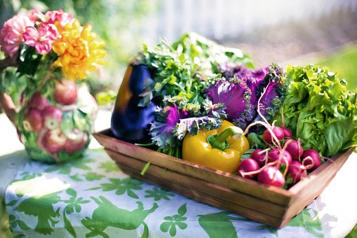 beautiful colorful summer vegetables i