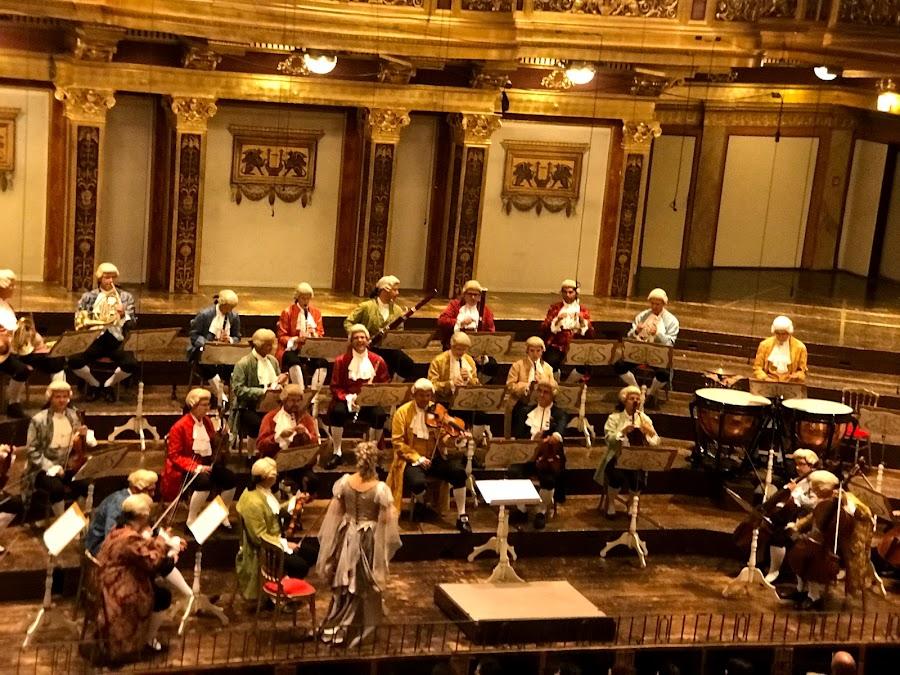親臨感受維也納新年音樂會的現場 - 維也納金色大廳 Musikverein - 奧捷遊賞 :: 阿舍的精彩生活