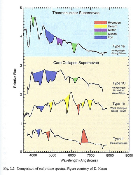 Early time spectra of the four main types of supernova explosions  (Source: Branch and Wheeler)