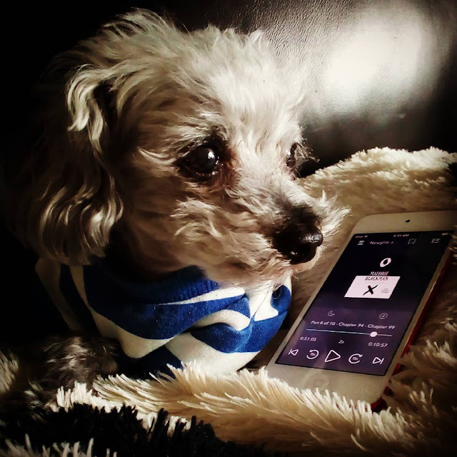 Murchie, dressed in a blue and white striped T-shirt, lies beside a white iPod with the cover of Noughts and Crosses on its screen. The cover features a white O against a black background and a white X against a black background.