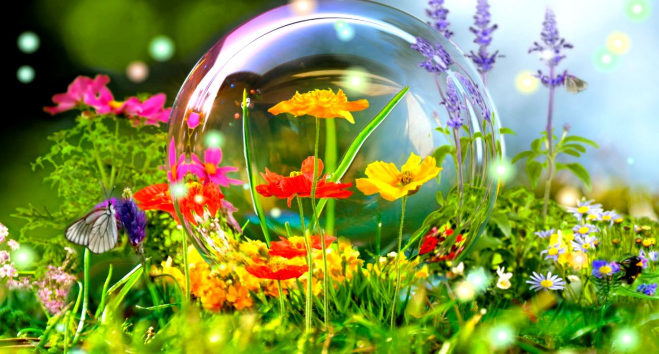 Flowers Nature Background Images Windows 10 Mac Wallpaper Sky