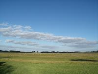 Terrenos agrícolas