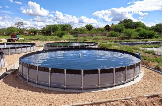 Asesor a trucha y tilapia estanques for Como criar truchas en estanques