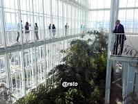 La serra bioclimatica del Grattacielo Intesa Sanpaolo