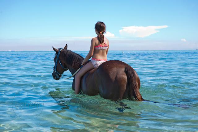jeune cavalière à cheval dans la mer sur la plage du Morne à l'Île Maurice