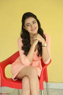 Rukshar Mir in a Peachy Deep Neck Short Dress 097.JPG