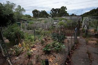 Ceres Community Garden