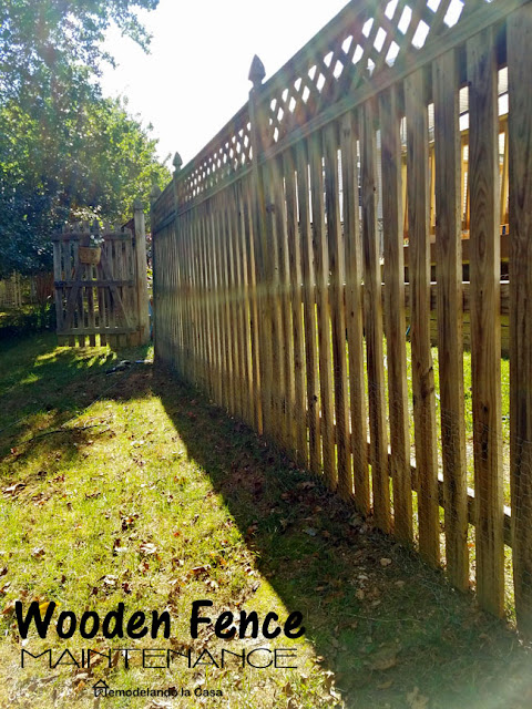 fence fixed with the proper tools - Backyard