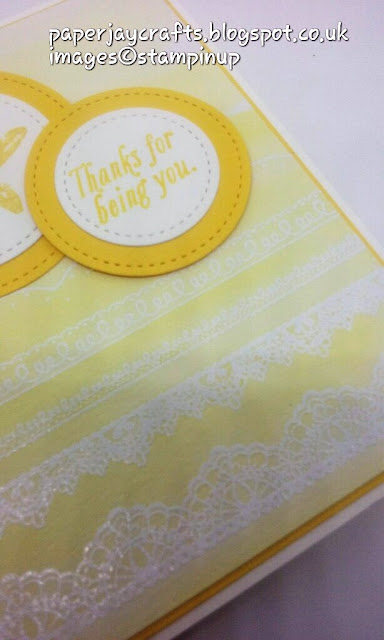 Stampin Up Delicate Details close up Paperjay crafts